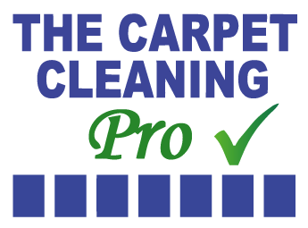 The Carpet Cleaning Pro